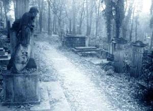 На этом кладбище скоро будут гонять электромобили