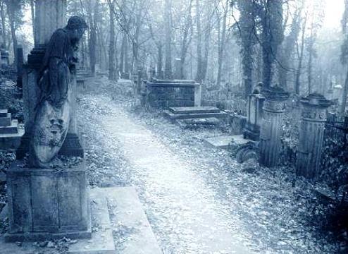Элетромобили годятся и для кладбищ